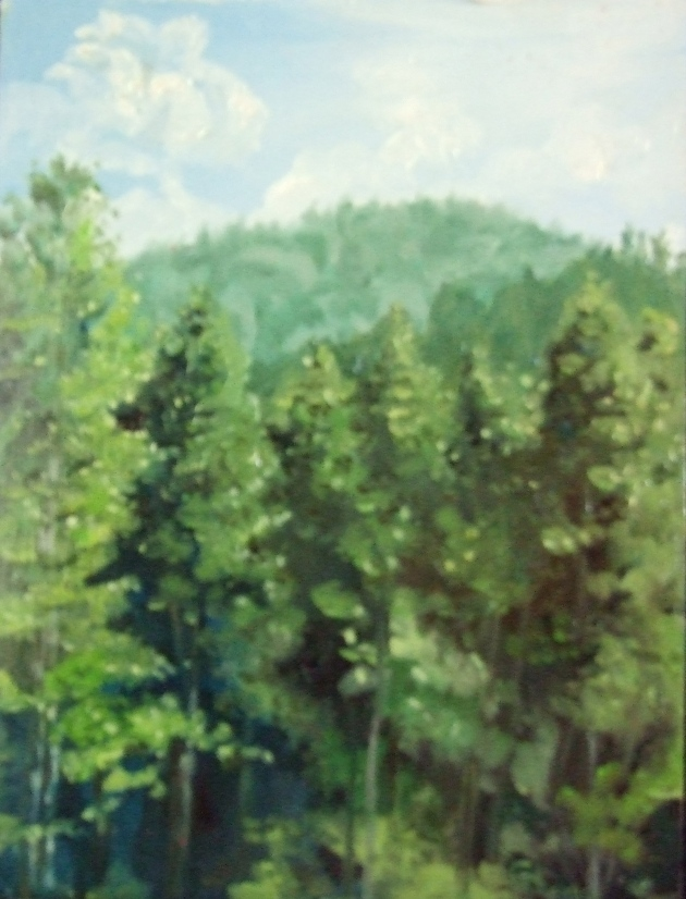 En Plein Air Painting Chattahoochee National Forest by Ginger Dean